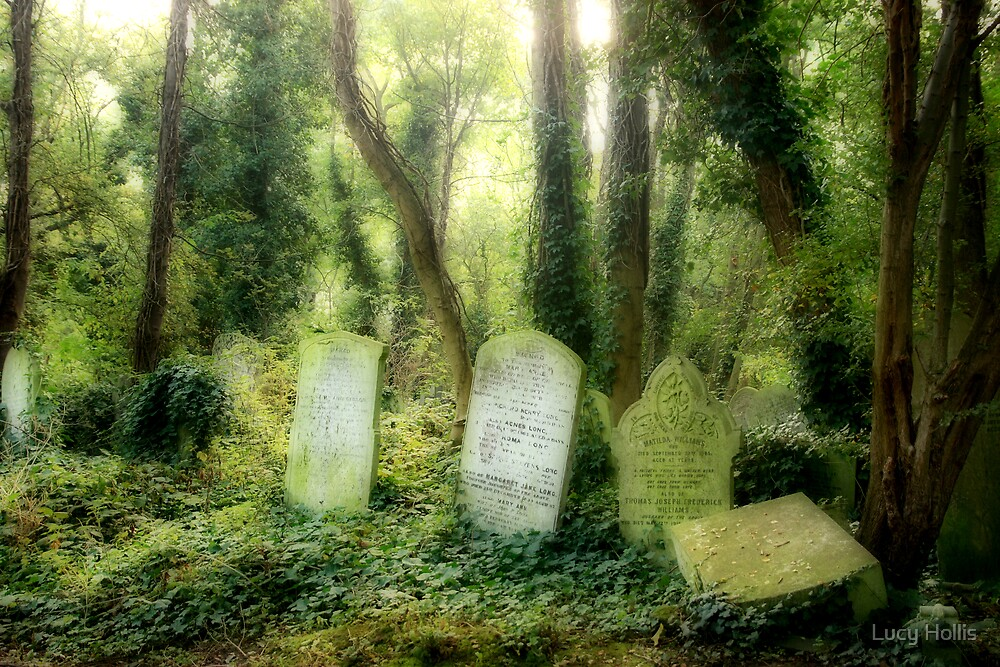 Abney Park Cemetery by Lucy Hollis