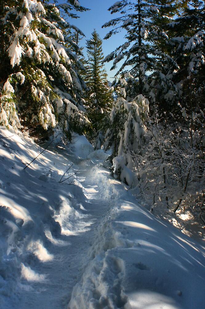 mt Si trail by rutger