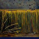 The Field by Karen Amato