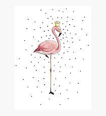 Flamingo Mädchen mit Krone Acryl Illustration Photographic Print