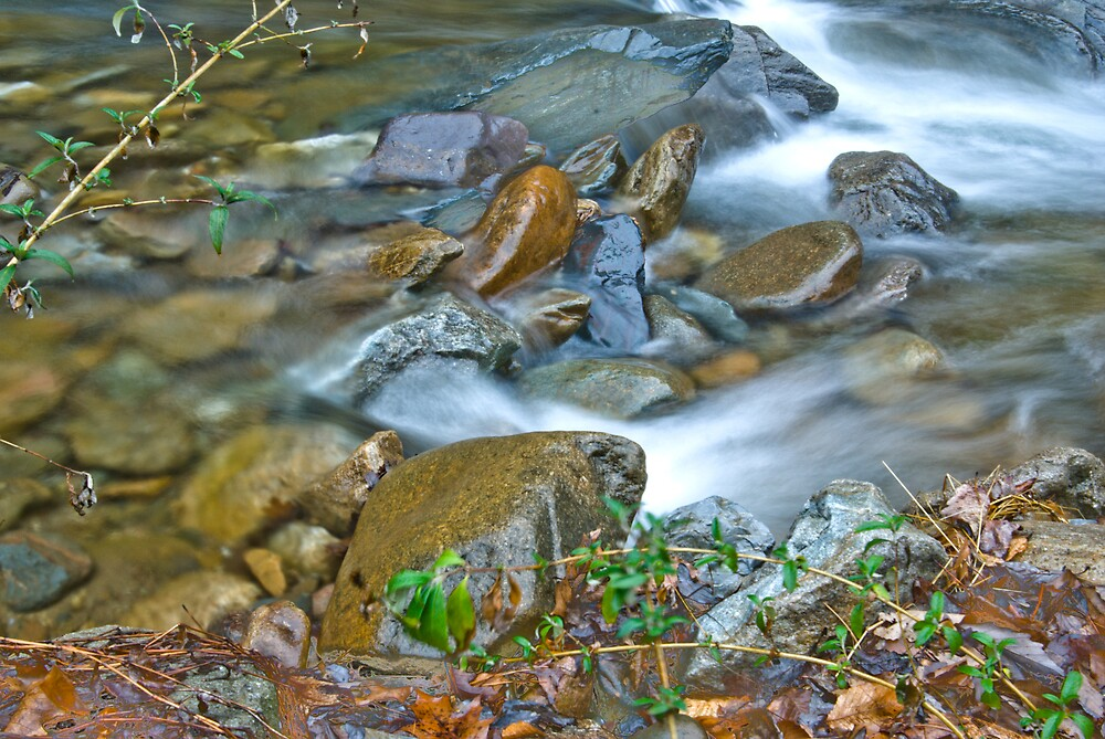 Jennings Creek Series - Slippery When Wet by Rod  Adams