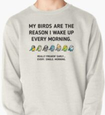 Early Birds Pullover