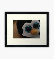 Adorable baby penguin Framed Print