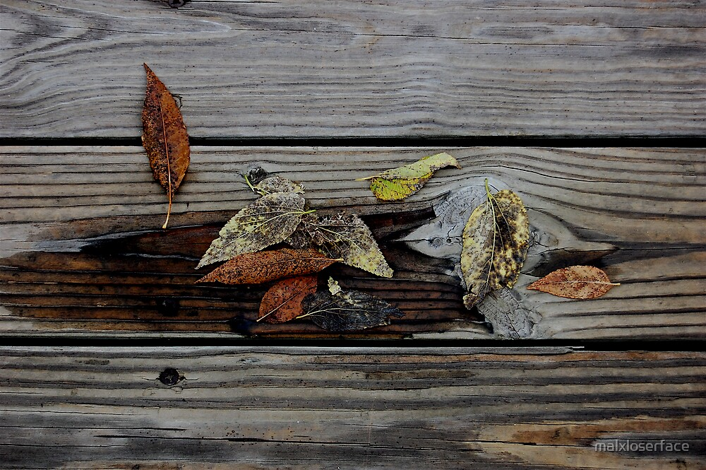 Fall Leaves by malxloserface