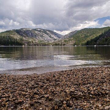 The Pinecrest Shore by rachelallison