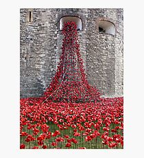 A Cascade Of Poppies At The Tower Of London Photographic Print