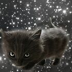 Space Kitten by Ladymoose