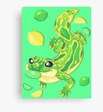 Lemon Lime Lizard Canvas Print