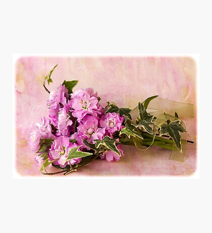 Summer's Ribboned Beauty  Photographic Print
