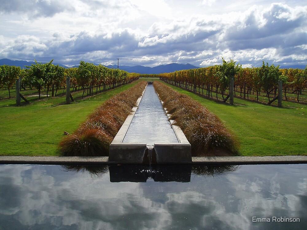Vineyard by Emma Robinson