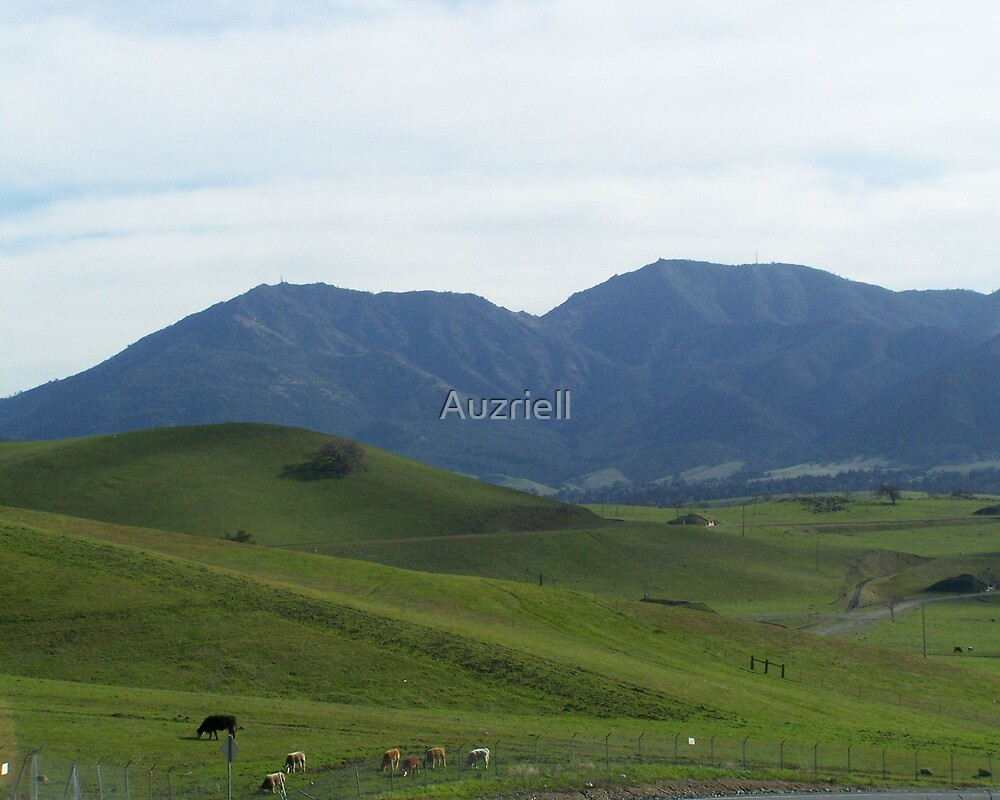 Mt. Diablo and Foot Hills by Auzriell