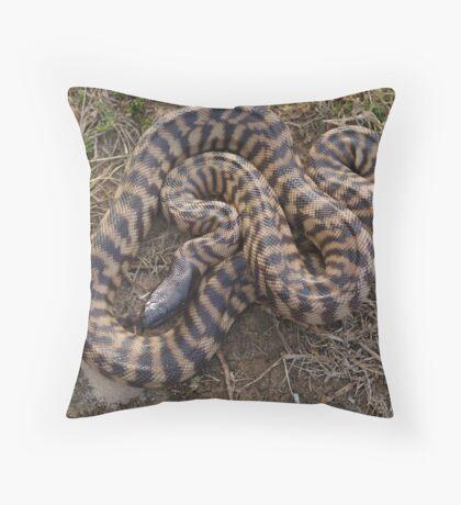 Black Headed Python - Western Australia Throw Pillow