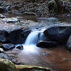 Curtis Falls Cascades by W E NIXON  PHOTOGRAPHY