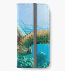 Turtle swimming  iPhone Wallet
