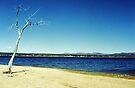 Northampton Beach by John Schneider