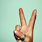 Peace Out by Ashleigh Robb