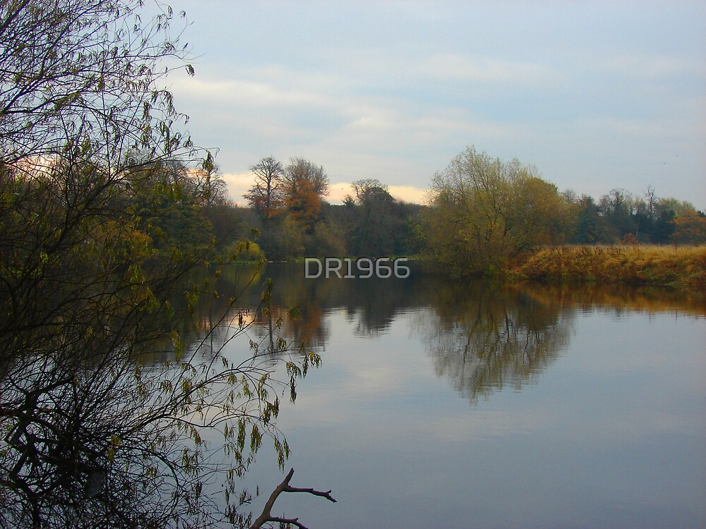 Teesside Autumnal by DR1966