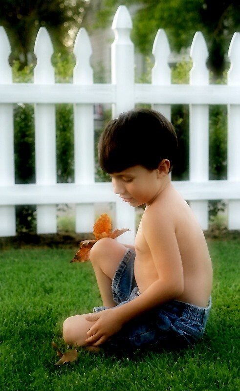 Boy with Leaves by Debbie Sickler