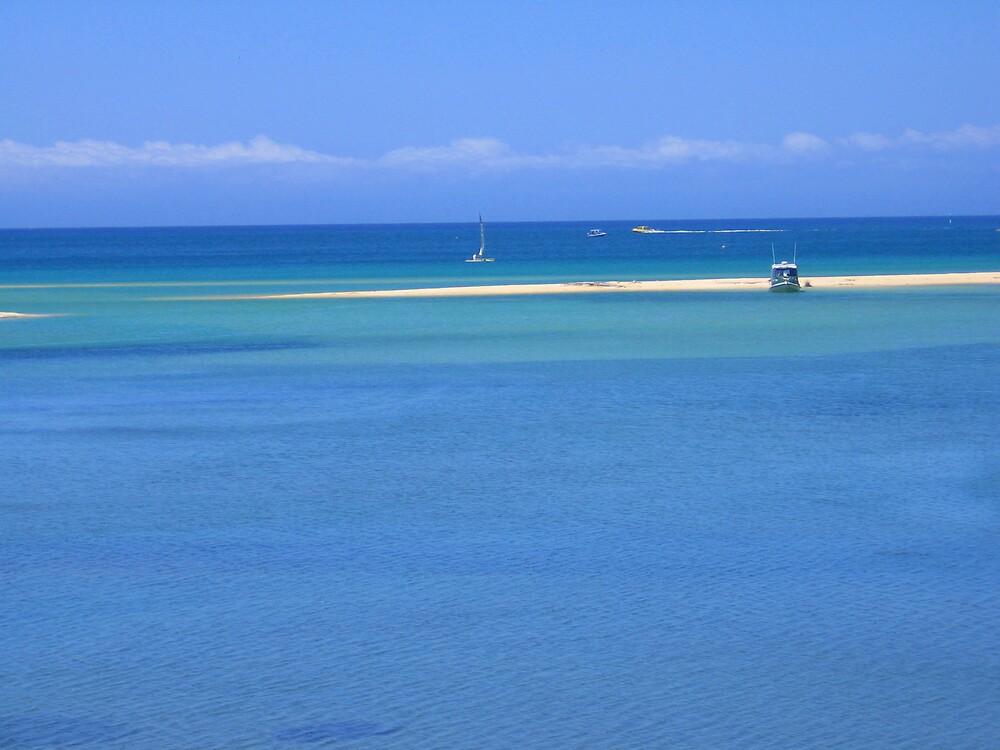Abel Tasman's Paradise by SinaStraub
