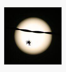 Lunar Spider Photographic Print