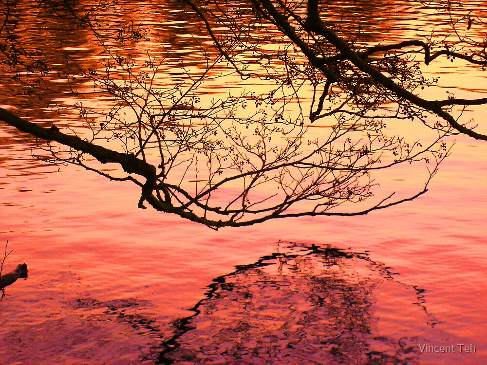 Red Water by Vincent Teh