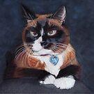 Beautiful Cross Eyed Cat by Patricia Barmatz