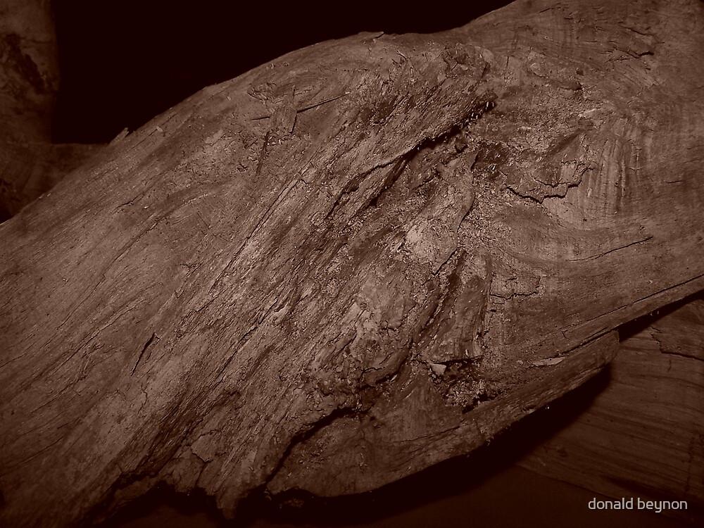 wood work 4 by donald beynon