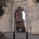 Porto Gate II by Tom Gomez