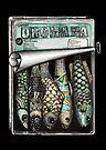 Gourmet sardines by Jenny Wood