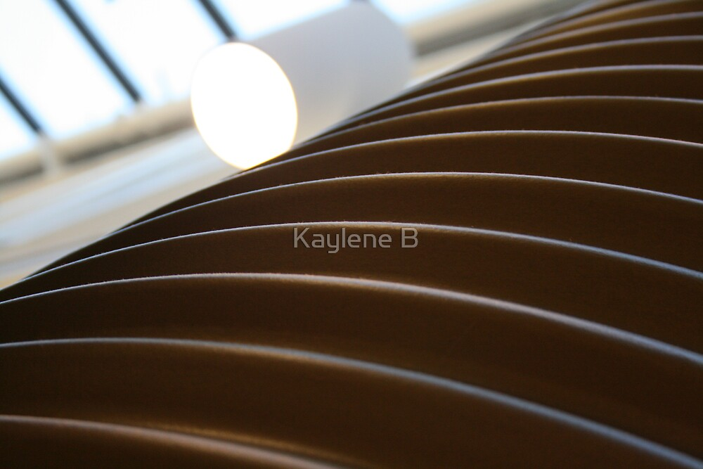 Spirals by Kaylene B