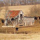 Favorite Barn by Jelderkc