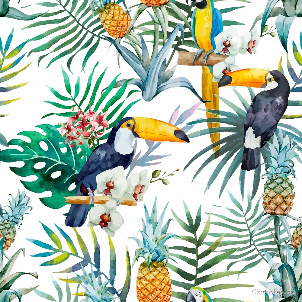 Tropical summer Pineapple Parrot Bird watercolor  by Citronelladesig