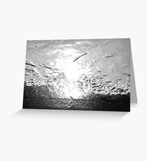 Silvery Sundown Greeting Card