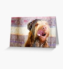 Orange and White Italian Spinone Dog Head Shot with Hat Greeting Card