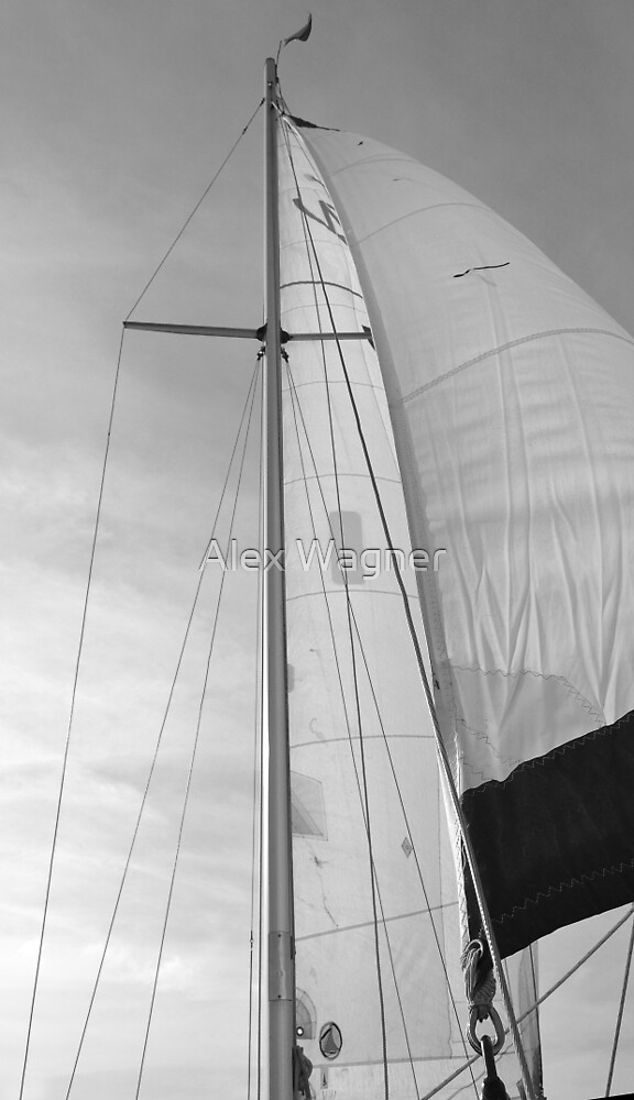 B&W Sails #1 by Alex Wagner