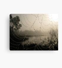 Spider's Morning Canvas Print