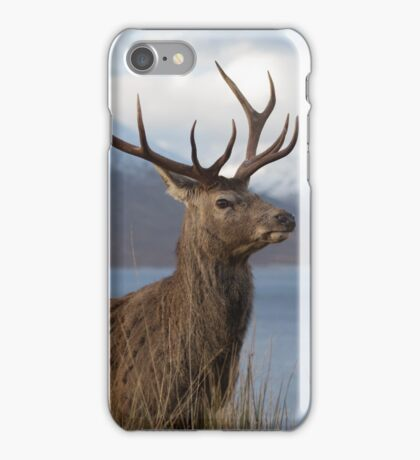 Red Deer Stag in Winter iPhone Case/Skin