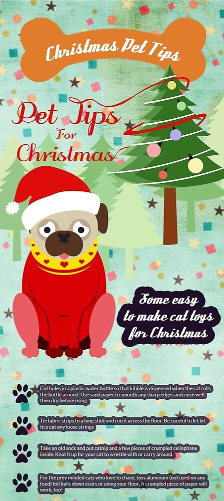Christmas Pet Tips by Pet Sitting
