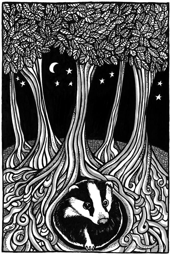Badger Moon by Anita Inverarity