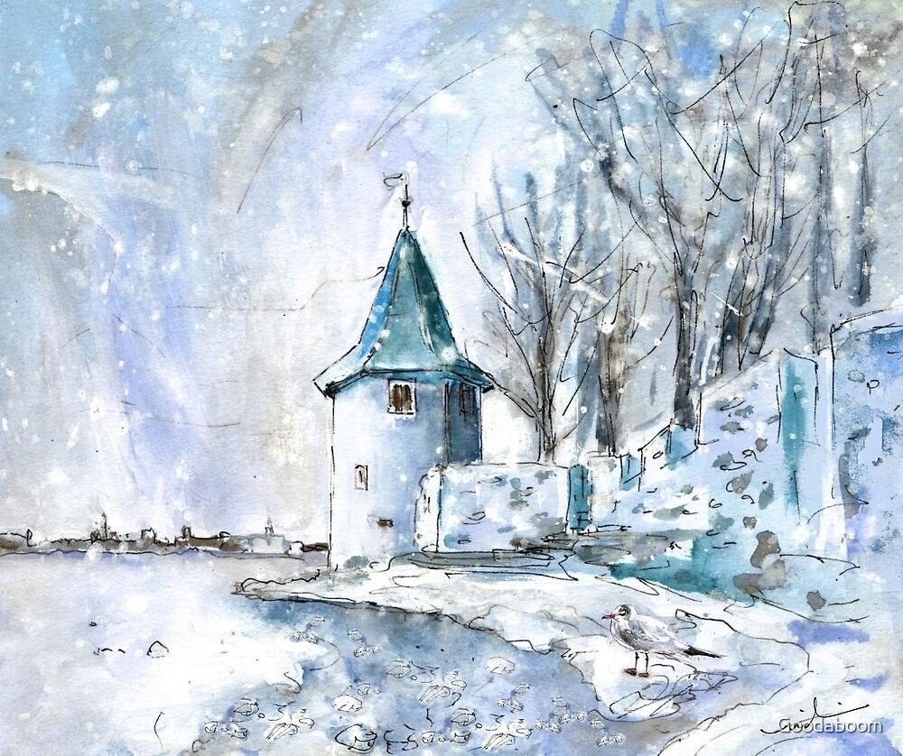 A Seagull In Lindau In Winter by Goodaboom