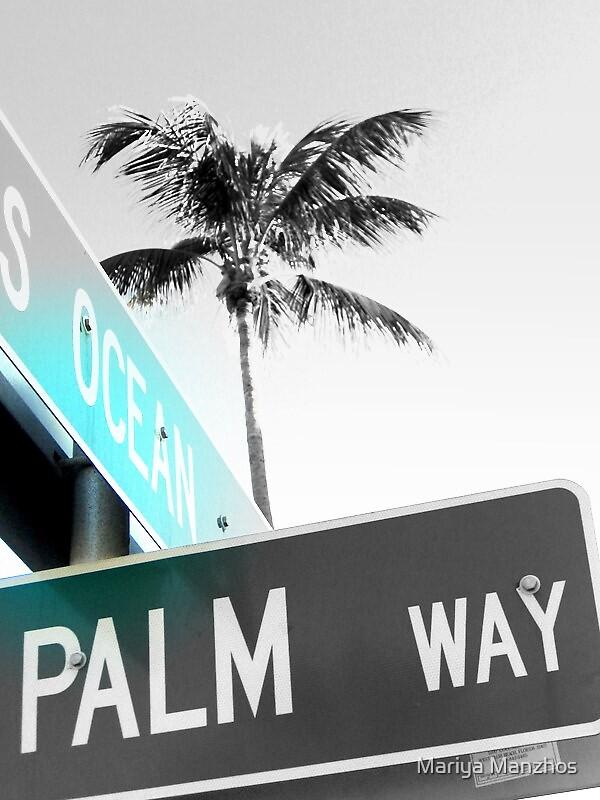Palm Beach by Mariya Manzhos