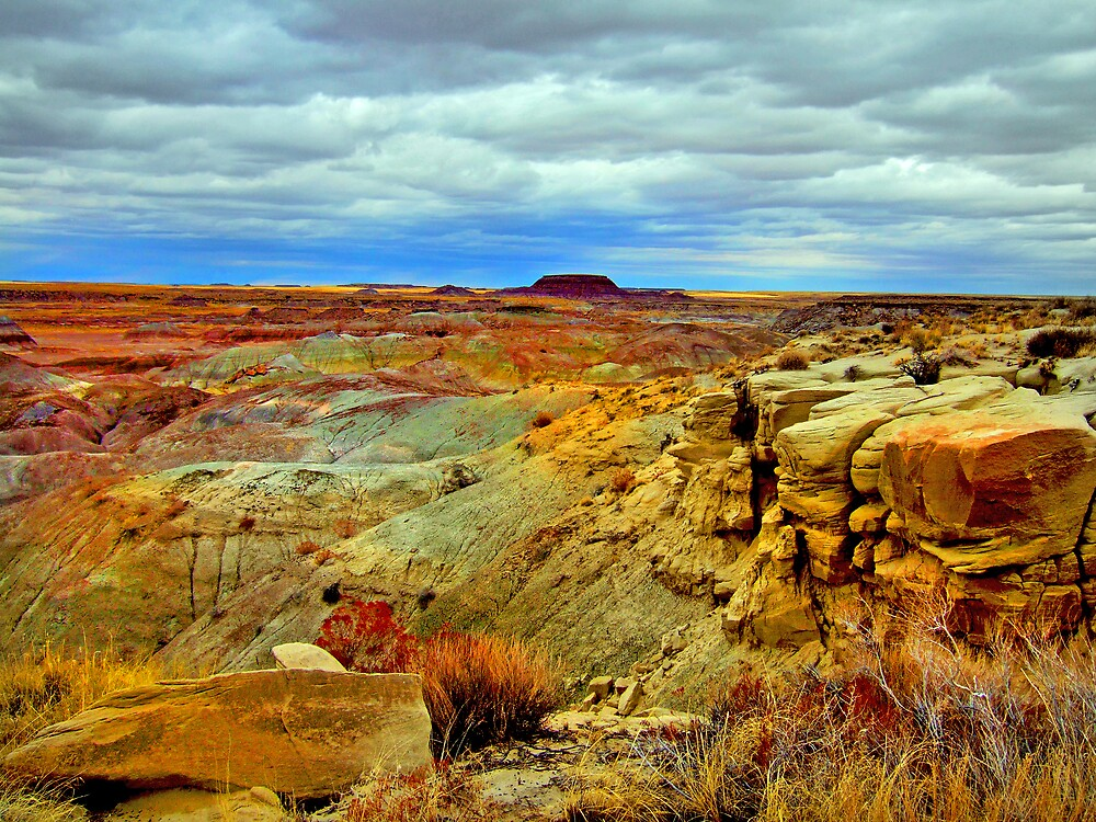 Painted Desert by Michael Wolf
