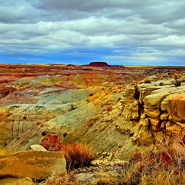 Painted Desert by ivoire