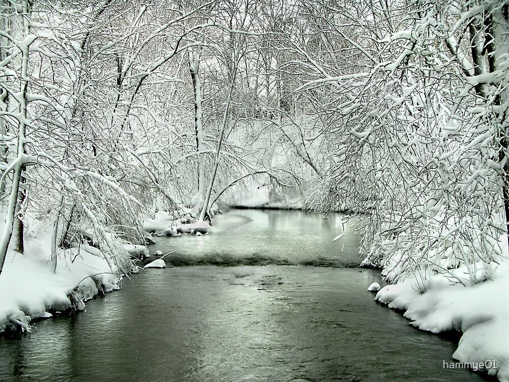 Winding River by hammye01