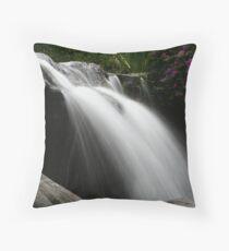 Chinese Silk Throw Pillow