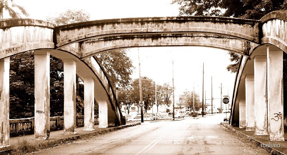Bridges of Hilo by maliaio