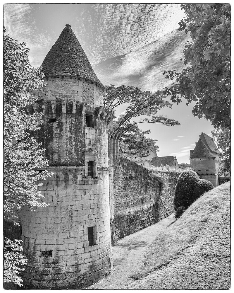 BW France Chateau de Losse by Steven House