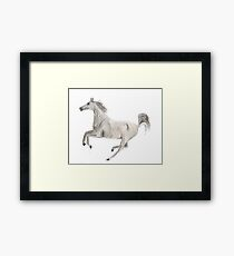 Flying Horse Framed Print