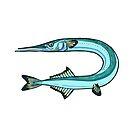 The garfish by smalldrawing
