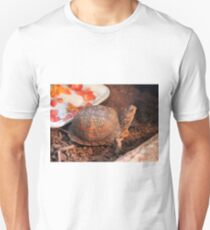 Pampered Turtle T-Shirt